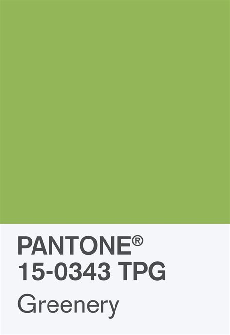 greenery code the pantone colour of the year 2017 is green news