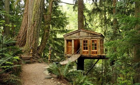 weekend fun the gambier island tiny getaway cabin small cottages for sale vancouver island cozy little cabin