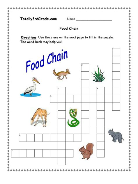 Food Chain Worksheet 1 B