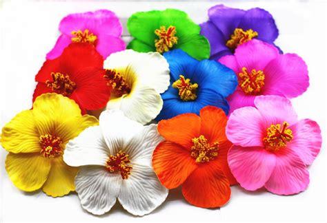 Hawaiian Flowers by Popular Hawaiian Hibiscus Flower Buy Cheap Hawaiian