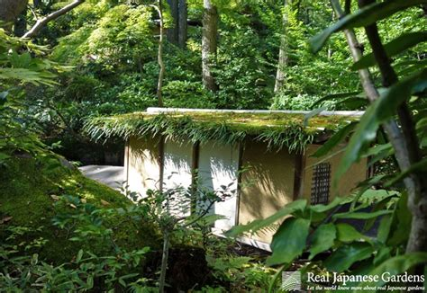 45 stunning japanese moss garden pictures in this e book for only 1 95 moss in the japanese