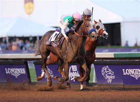 'Best horse in the world' Arrogate beaten at odds of 1 20