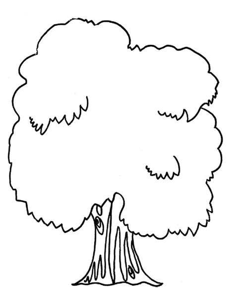 tree coloring pages mango tree colouring pages clipart best