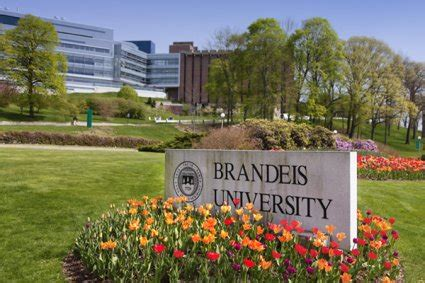 Brandeis Mba Ma by Brandeis International Business School Ibs Waltham
