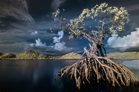 imagenes impresionantes paisajes paisajes impresionantes en la c 225 mara spanish china org cn