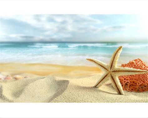 Boat Wall Stickers stella marina e corallo natura stampa su tela