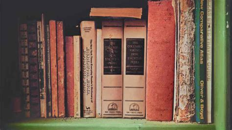 mensole libri dalani mensole per libri un mondo di idee a disposizione
