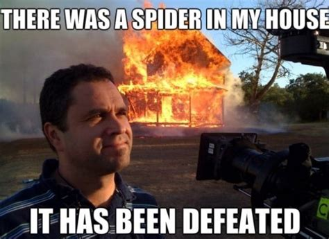 Killing Meme - funny quotes about killing spiders quotesgram