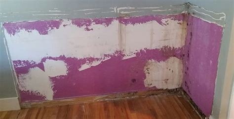 mold in my bedroom the weight is over week 63 strength meet vulnerability