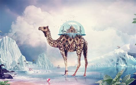 camel taj mahal surreal scenic wallpapers camel taj