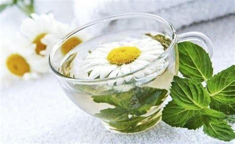 alimenti da evitare con la candida curare la candida con rimedi naturali