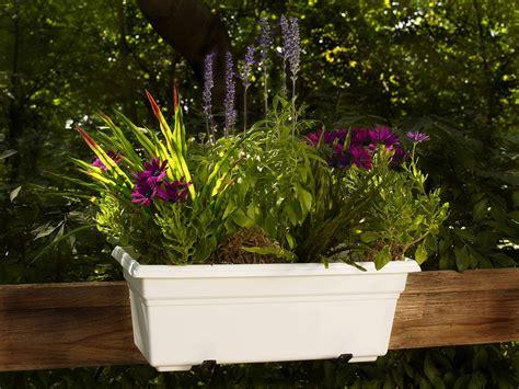 plastic window box planter garden plant flower outdoor