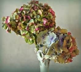 can you laminate flower petals wedding bouquet ideas what to do with wedding bouquet