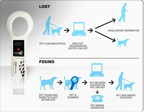what is a microchip for dogs breed directory superior gps microchip for dogs