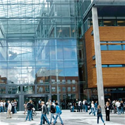 Bi Business School Mba by Master Of International Business Degree Options