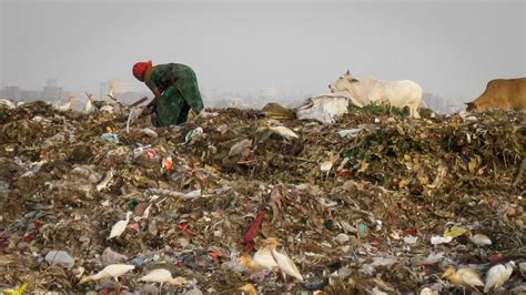 Scrap and Trade: Scavenging Myths   Our World