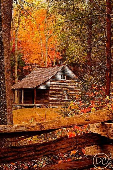 Cabin In The Woods Tennessee by Cabin In The Woods Great Smoky Mountains Cades Cove