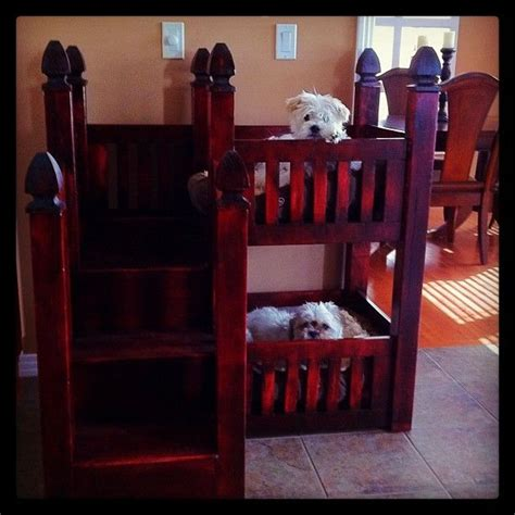 dog bunk bed dog bunk bed pedro pinterest