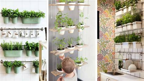 Plante De Cuisine by 9 Fa 199 Ons De Cultiver Des Plantes D Int 201 Rieur Pour La
