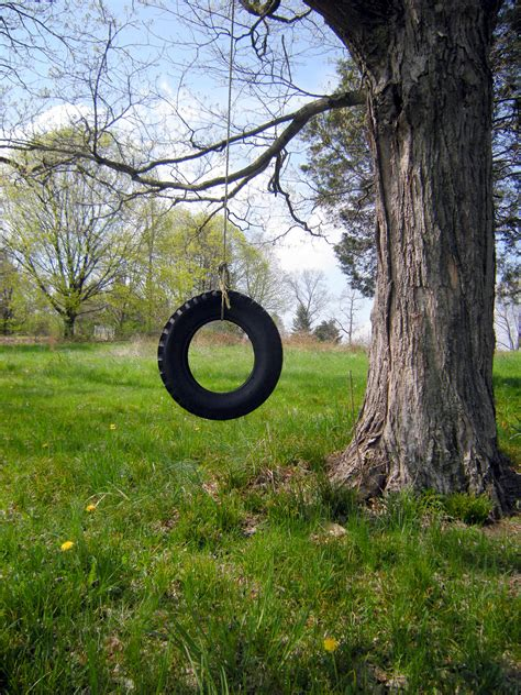 tree with tire swing somewhere between now and then rustic chic