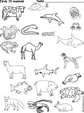 mammal activities worksheets and crafts
