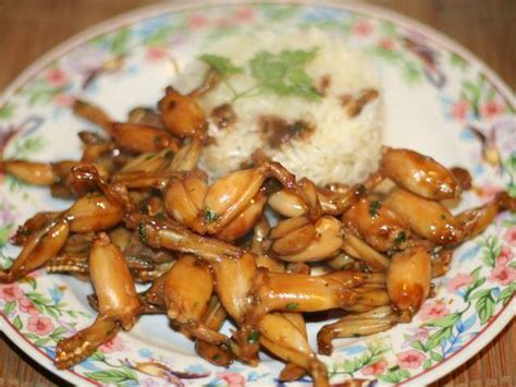 recettes de cuisses de grenouilles 2