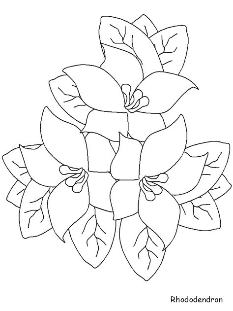 Flowers Coloring Pages Color Printing Flower Coloring Pages For 13 And Up Printable