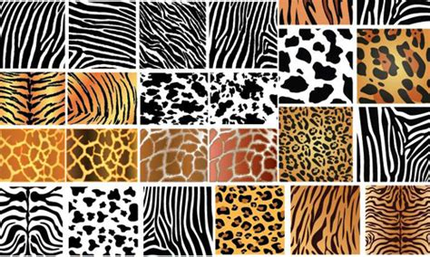 how to make zebra pattern in photoshop 100 diverse animal skin patterns for an added twist
