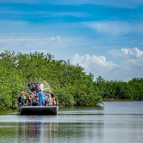 everglades boat tours near naples must do day trips in naples best excursions in florida