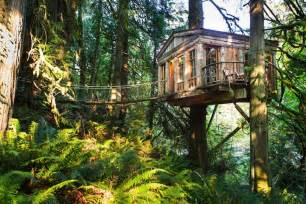 Rent To Own Bedroom Furniture rainforest hotel built in the trees tree house point