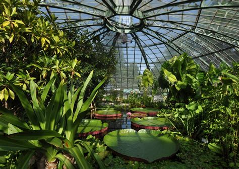 Indoor Botanical Gardens Botanical Gardens Of Berlin Germany Outdoor And Indoor Gardens