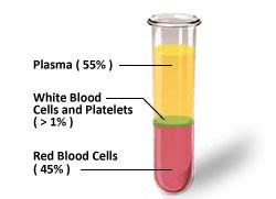 what color is plasma what is plasma adma biocenters