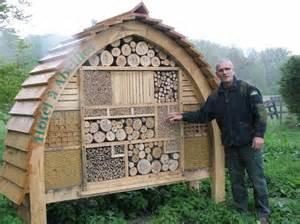maison des insectes page 2 le monde des insectes