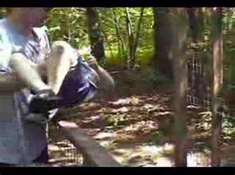 baboon attacks youtube