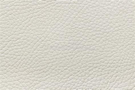 Tampa Upholstery Textura De Couro Bege Imagens De Stock Imagem 25826734