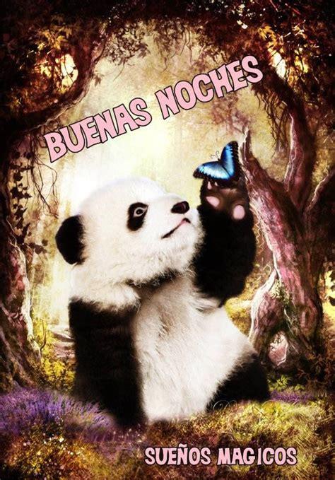 goodnight panda buenas buenas noches imagen 7514 im 225 genes cool
