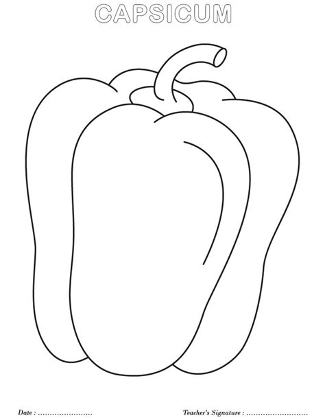 coloring pages vegetables preschoolers free coloring pages of vegetables