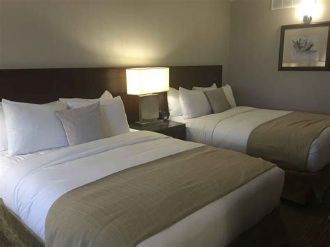 hilton beds the doubletree by hilton kamloops hotel review carpe