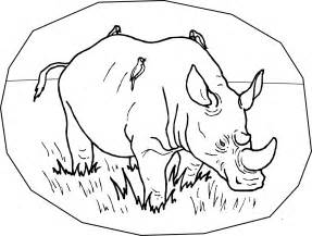 amazing coloring pages rhino printable coloring pages