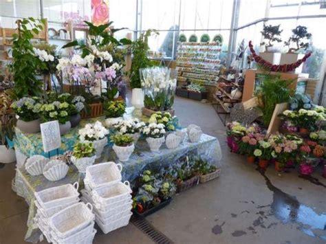 tweedehands keukens zaltbommel van koolwijk bloemen en planten winkelen in