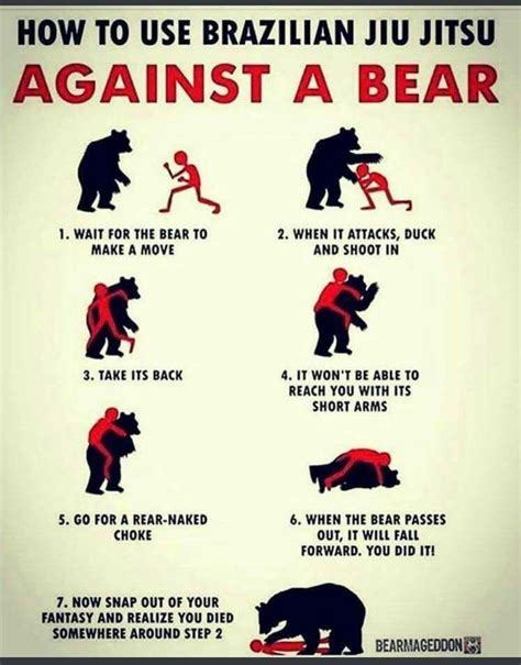 how to a to fight how to use jiu jitsu against a x post from r learnuselesstalents