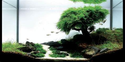 aqua terrarium designs 12 terrarium ideas for home decor ultimate home ideas