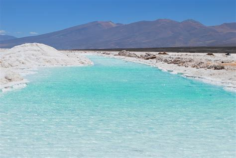 chile chapter 1 saved by a white 180 derriere cinz74 salar de maricunga iii regi 243 n chile se ubica a 180 kms