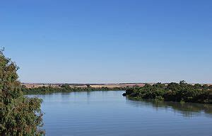 murray river wikipedia