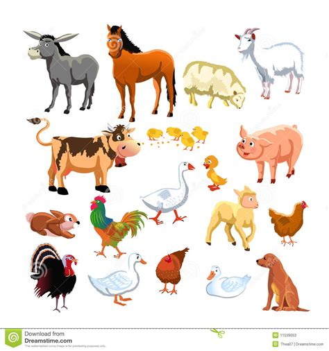 imagenes animales varios animales del co ilustraci 243 n del vector ilustraci 243 n de