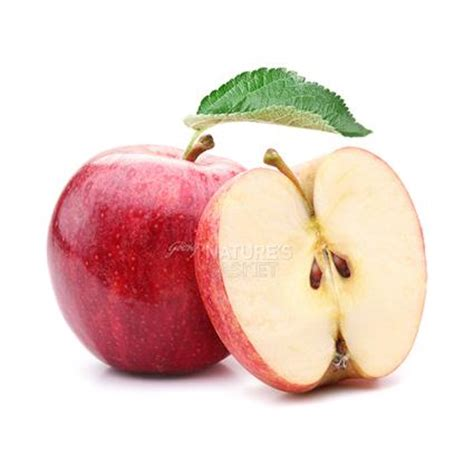 apple new zealand apple new zealand rose buy apple new zealand rose online