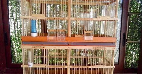 costruire gabbia curiosit 224 web costruire gabbie in legno per allevamento