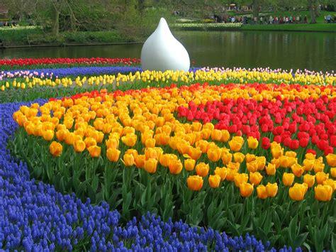 giardini di keukenhof amsterdam i giardini di keukenhof centumcellae news