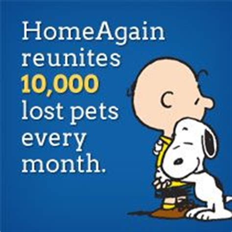 home again microchip registration image mag