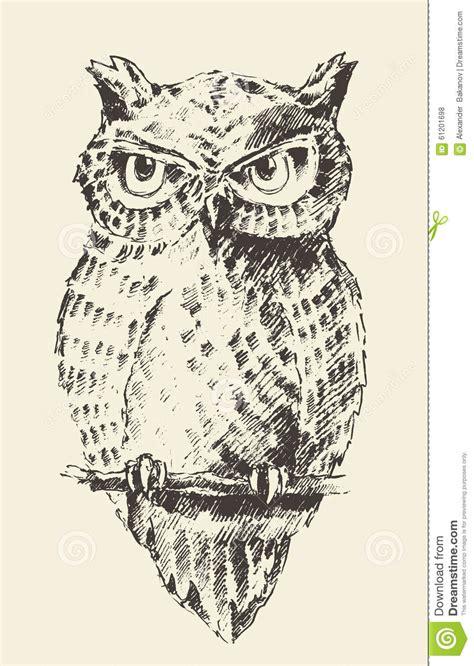 retro drawing owl vintage illustration retro hand drawn sketch stock